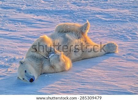 Polar bear rolling on Arctic tundra snow, digital oil painting - stock photo