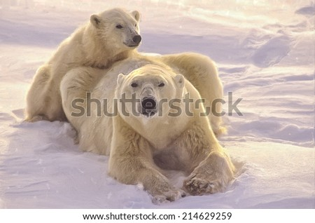 Polar bear with her cub on Arctic tundra - stock photo