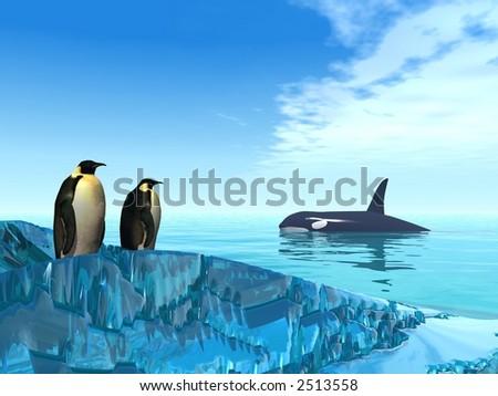 polar wildlife - stock photo