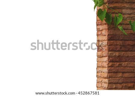 pole stone  decoration home with liana of leaves, isolated on white background. - stock photo