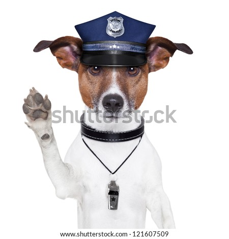 police dog asking to stop with cap - stock photo