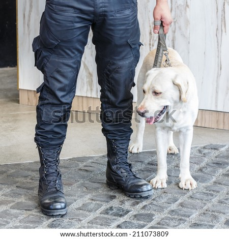 Police dog with human partner - stock photo