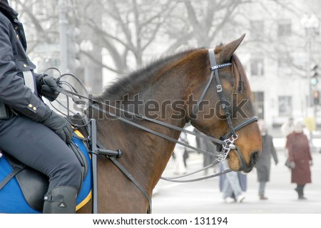 Police officer patrolling on horseback; (taken in DC on the day of George W Bush's inauguration) - stock photo