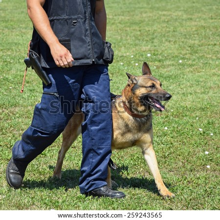Police officer with his german shepherd dog - stock photo