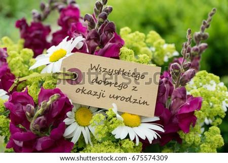 Polish Greeting Card Birthday Red Flowers Photo 451639987 – Polish Birthday Greeting