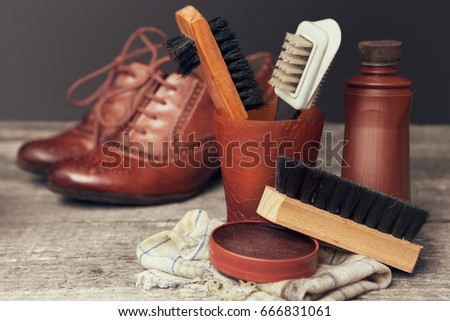 Polish cream and various cleaning brushes for shoes