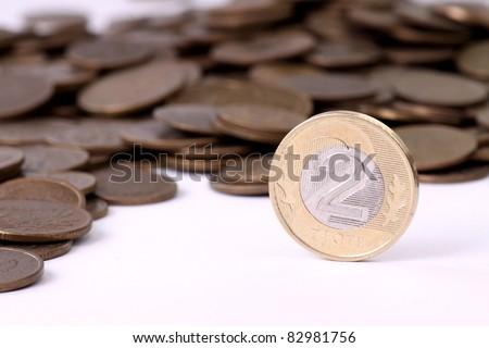 Polish currency on white background - stock photo
