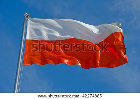 polish flag on a pole against blue sky - stock photo