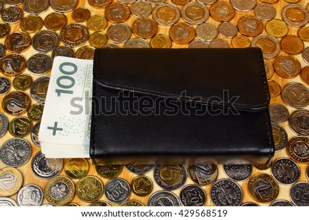 Polish money and wallet on the coins background - stock photo