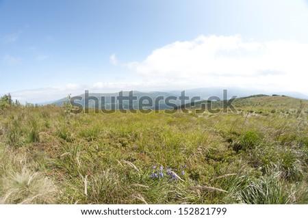 polish mountains - stock photo