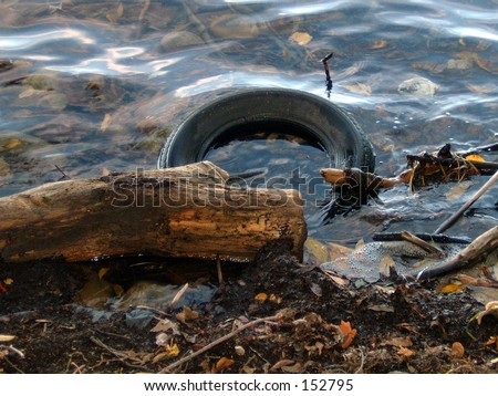 Polluted Lake Shore - stock photo