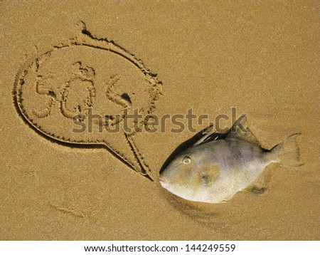 pollution, dead fish on the beach with balloon - stock photo