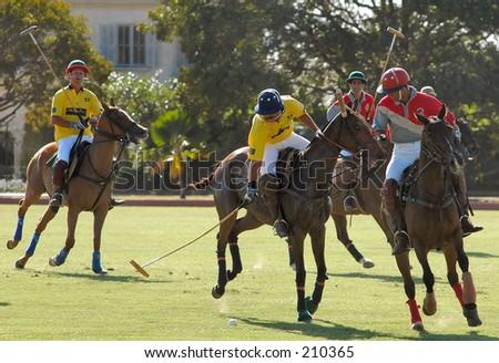 Polo Match - stock photo