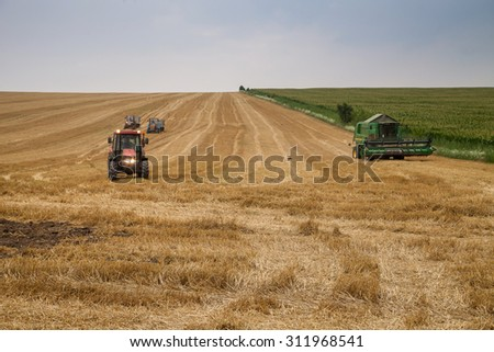 Polski Trambesh - July 2: Harvest of wheat and agricultural machinery. In the next block with corn on July 2, 2015, Polski Trambesh, Bulgaria