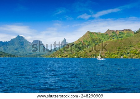 Polynesia Island. Ocean and forest. - stock photo