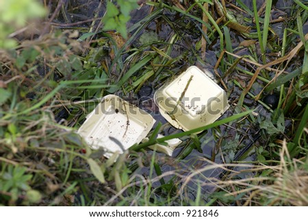 Polystyrene fast food packaging polluting a river bank - stock photo