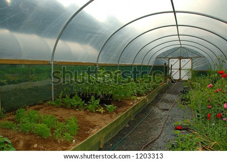 PolyTunnel - stock photo