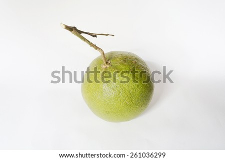 pomelo on white with a thick yellow skin and bitter pulp that resembles grapefruit in flavor. - stock photo