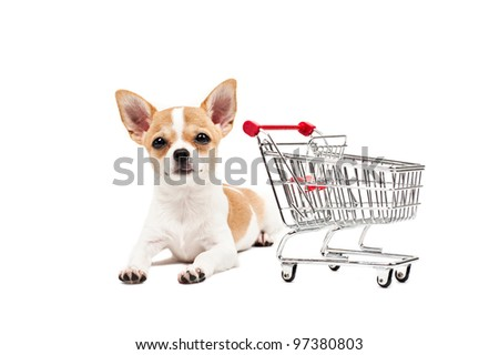 Pomeranian dog next to an empty shopping cart, over white