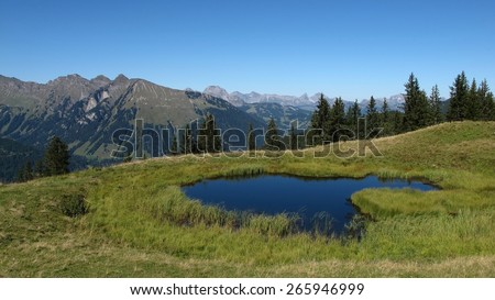 Pond and rural landscape, summer scene near Gstaad - stock photo