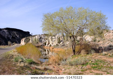 Pond and Tree by the Road in Rural Utah - stock photo