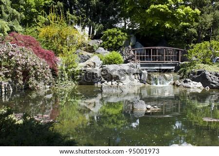 pond, bridge and flowering shrubs in a Japanese Garden in Kelowna BC - stock photo