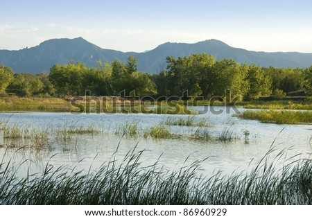 Pond in a wildlife refuge area on the Colorado prairie with mountains in the background, grasses and trees - stock photo