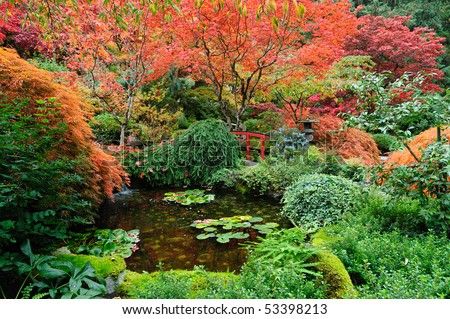 Pond of the japanese garden in butchart gardens, vancouver island, british columbia, canada - stock photo