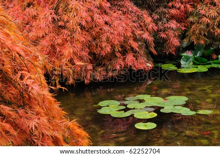 Pond of the japanese garden inside the famous historic butchart gardens (built in 1903), vancouver island, british columbia, canada - stock photo