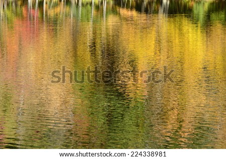 Pond reflection of autumn leaves in New England - stock photo