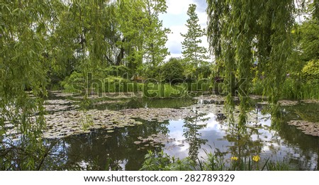 Pond, trees, and waterlilies in a french botanical garden