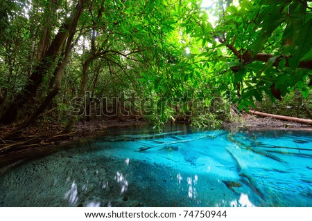 Tropical Rivers Stock Photos Images Pictures