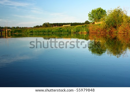 Pond with clear water and trees - stock photo