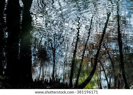 Pond with trees and reflections - stock photo
