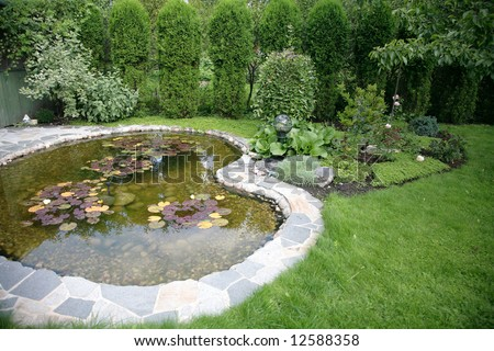 pond with water-lily - beautiful element landscape - stock photo