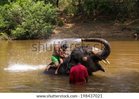 PONDA, GOA, INDIA, 09, MAR. 2014: Bath on the elephant at Goa, India, 09, MAR. 2014. Favorite pastime for tourists is swim in the river with an elephant. - stock photo