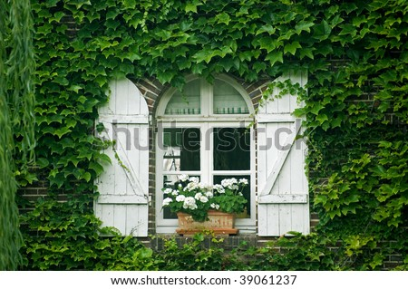 Pont-Tranchefetu (Eure-et-Loir, Centre, France) - Old house covered with creepers: window