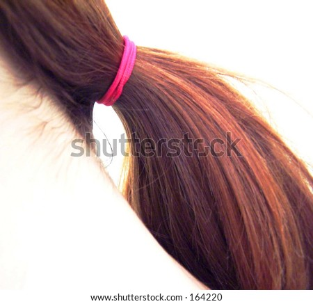 pony tail - stock photo