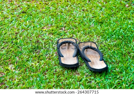 pool shoes on fresh green ground - stock photo