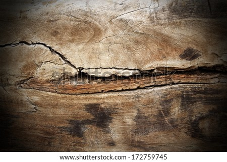poplar wood cracked texture; this piece of wood is more than two hundred years old, it was finished with hand and hatched, not with industrial technology - stock photo