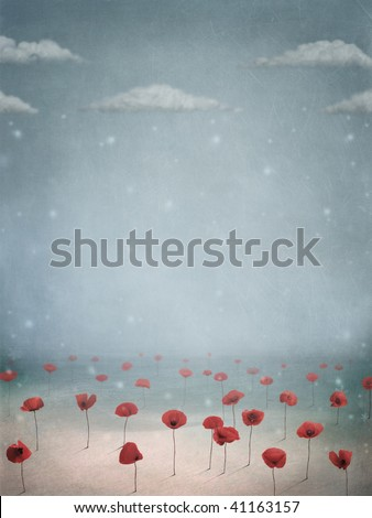 Poppies in the snow - stock photo