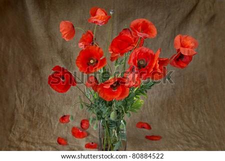 Poppies in the vase against dark grunge background - stock photo