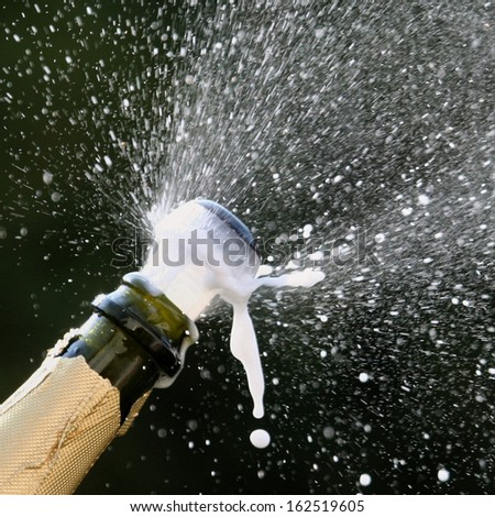 popping champagne - stock photo