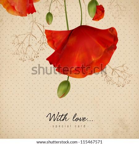 Poppy card - stock photo
