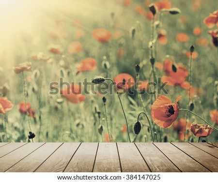 poppy flower field on the sky. nature abstract - stock photo