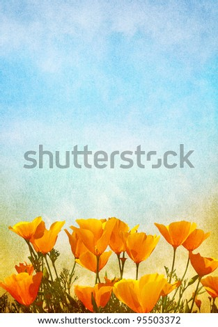 Poppy flowers with a gradient background of fog and mist.  Image displays a pleasing paper grain texture at 100%. - stock photo