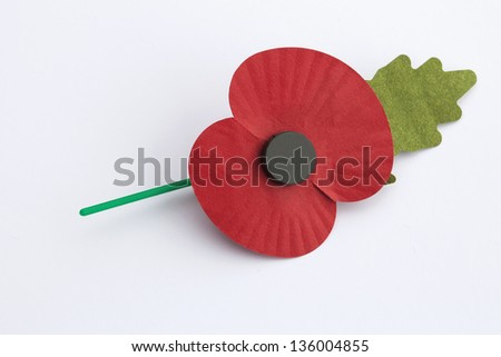 Poppy for Poppy Day or Remembrance Day - isolated on white background. - stock photo