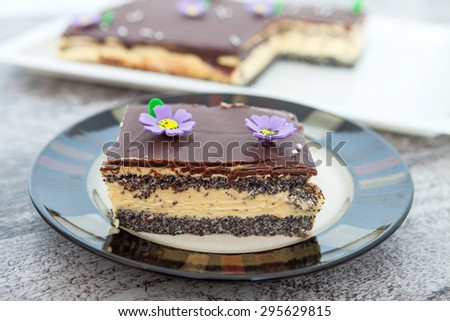Poppy Seed Cake - stock photo