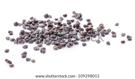 Poppy seed, isolated on white, Extreme close-up - stock photo