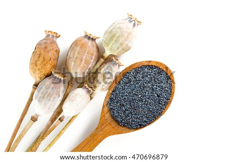 poppy seeds isolated on white